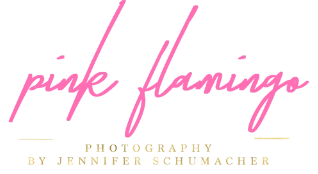 Pink Flamingo Photo Logo